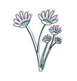 watercolor silhouette of hand drawing lilac daisy vector image