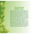 Green leaves abstract background for brochures vector image vector image