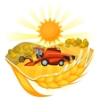 Combine harvester on wheat field Agricultural vector image