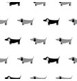 german badger-dog silhouette seamless vector image