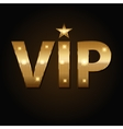 VIP golden icons in black background vector image