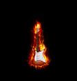 Fire burning guitar black background vector image