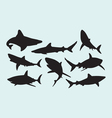 Shark wild animal silhouettes vector image