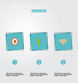 flat icons litchi bean garlic and other vector image