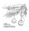 Christmas evergreen spruce tree vector image