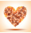 Heart shape from autumn leaves vector image vector image