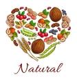 Healthy nuts grain berries in heart shape vector image vector image