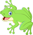 Cute frog isolated on white background vector image