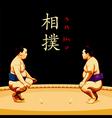 Sumo wrestlers vector image vector image