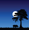 rhino under the tree and moon vector image