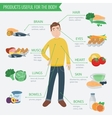 Healthy food for human body Healthy eating vector image