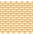 wicker pattern vector image