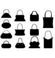 Female purse set vector image vector image