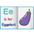 A picture of an eggplant in a book vector image