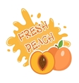 Fresh Peach splash icon logo sticker Fruit vector image