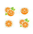 orange fruit and cut oranges vector image