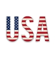 American United States Flag in glossy form button vector image