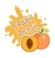 Fresh Peach splash icon logo sticker Fruit vector image