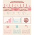 Pregnancy birth Infographics with timeline of vector image