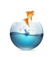 Goldfish jumping from the aquarium vector image