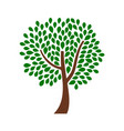 ornamental tree design with green leaves vector image