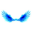 Blue fire wings vector image