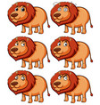 lion with different expressions vector image