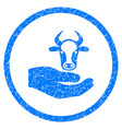 cow care hand rounded grainy icon vector image