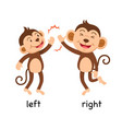 opposite words left and right vector image