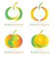 Colored fruit logo set vector image