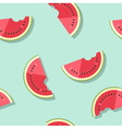 Pattern watermelons vector image
