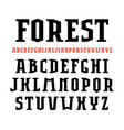 serif font in sport style vector image