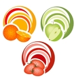 fruits with decoration vector image
