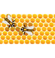 Working bees on honey cells vector image