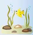 Yellow fish in the algae vector image