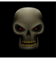 skull in the dark vector image