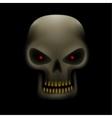 skull in the dark vector image