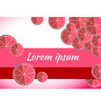 pomegranate food backgrounds template vector image