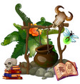Camp witch or sorcerer with pot and ritual items vector image