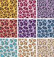 skin textures of leopard vector image