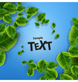 Green leaves texture vector image