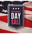 Independence day 4th of July sale background vector image