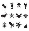 sea animal icon set vector image