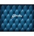 Blue Buttoned genuine leather vector image