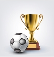 ball and trophy vector image