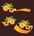 Peel Orange Ribbon Like vector image