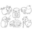Black And White Hedgehog Set vector image