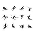 ski icons set vector image