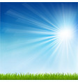 Green Grass And Sun Beam vector image