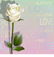 Colored background from letters love and a rose vector image